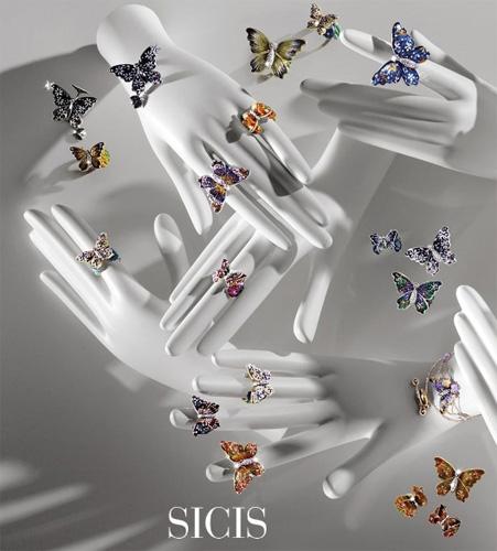 SICIS butterfly motyl